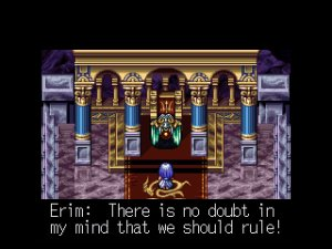 How much of this? (This is not Lufia 4)